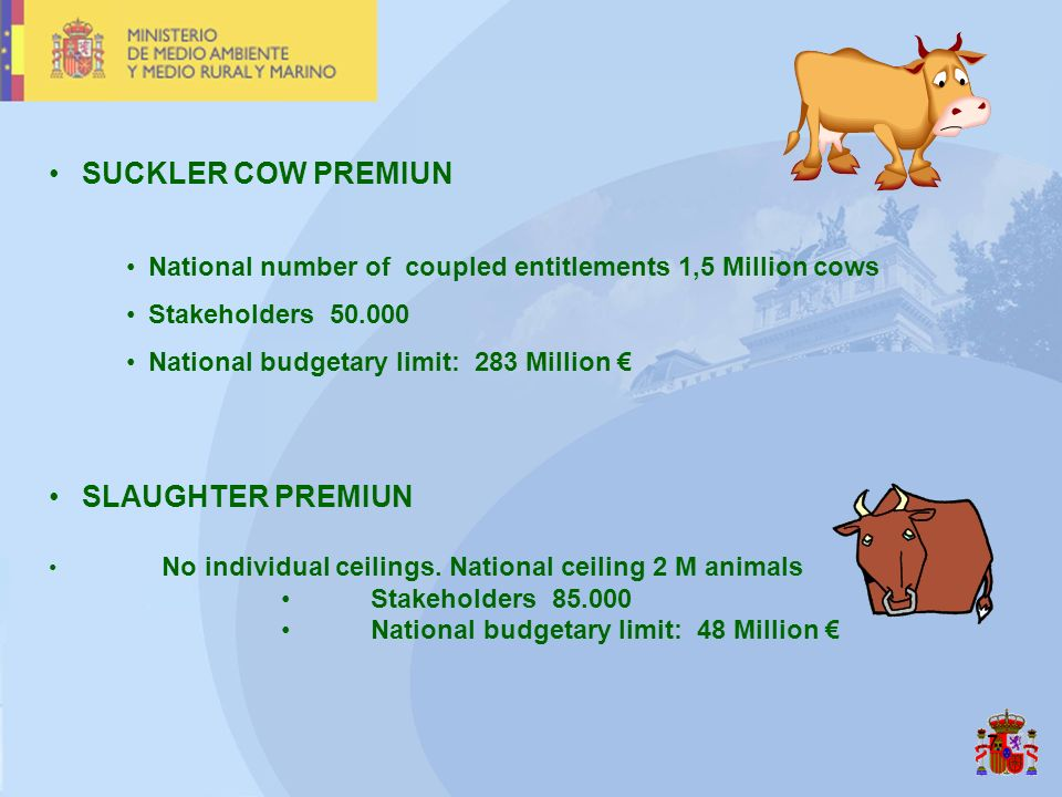 7 SUCKLER COW PREMIUN National number of coupled entitlements 1,5 Million cows Stakeholders 50.000 National budgetary limit: 283 Million SLAUGHTER PRE