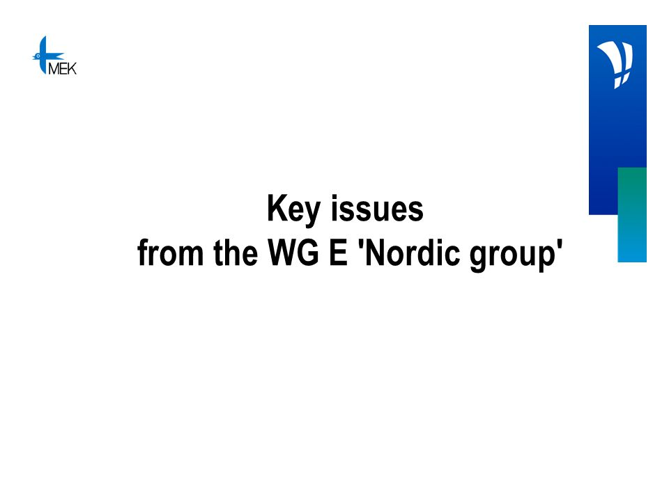 Key issues from the WG E 'Nordic group'