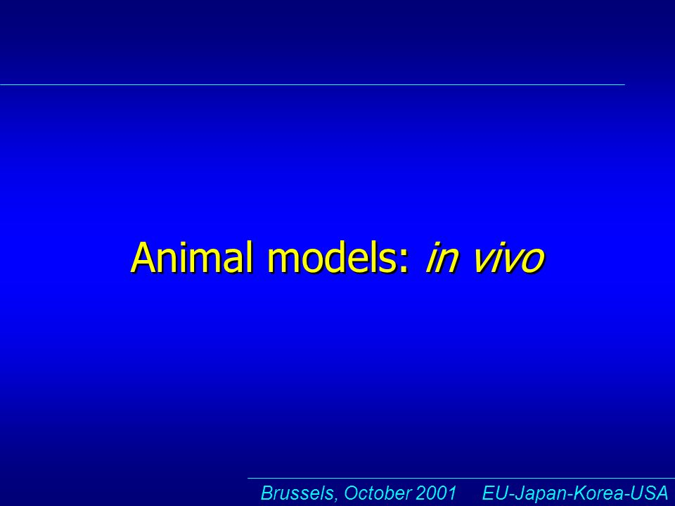 Brussels, October 2001 EU-Japan-Korea-USA Animal models: in vivo