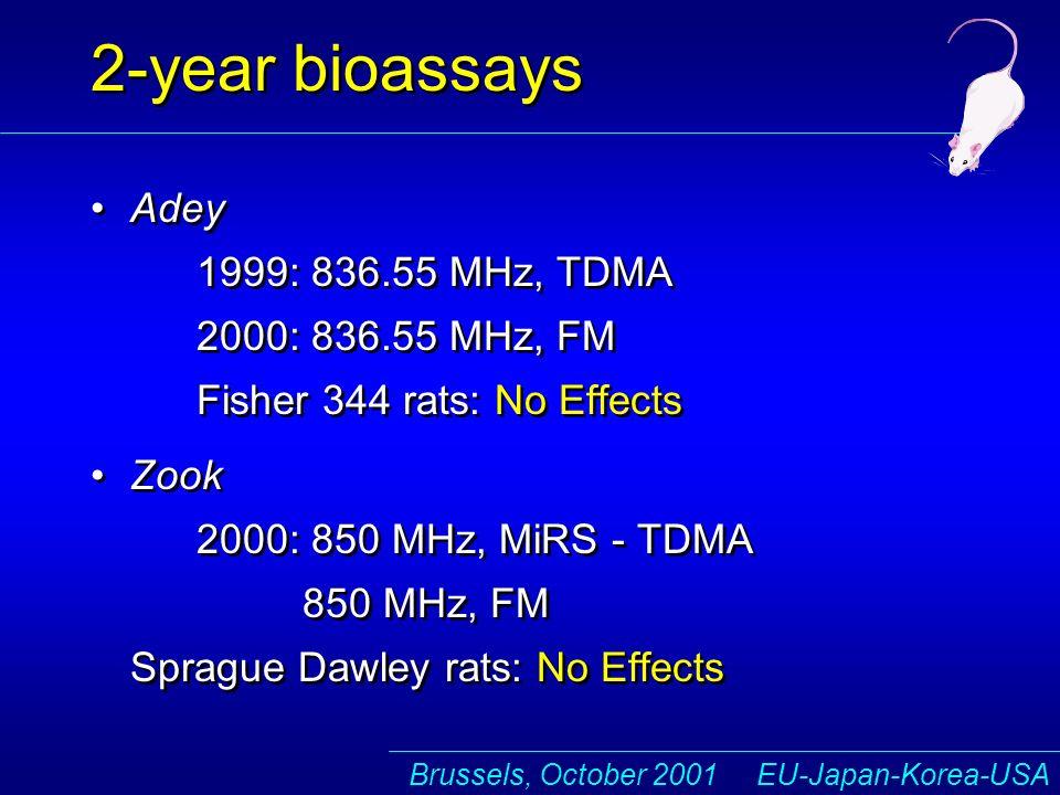 Brussels, October 2001 EU-Japan-Korea-USA 2-year bioassays Adey 1999: 836.55 MHz, TDMA 2000: 836.55 MHz, FM Fisher 344 rats: No Effects Zook 2000: 850 MHz, MiRS - TDMA 850 MHz, FM Sprague Dawley rats: No Effects Adey 1999: 836.55 MHz, TDMA 2000: 836.55 MHz, FM Fisher 344 rats: No Effects Zook 2000: 850 MHz, MiRS - TDMA 850 MHz, FM Sprague Dawley rats: No Effects