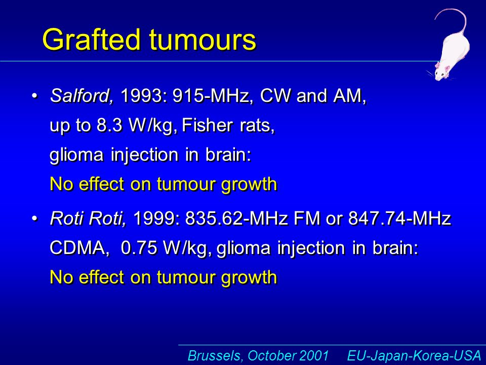Brussels, October 2001 EU-Japan-Korea-USA Grafted tumours Salford, 1993: 915-MHz, CW and AM, up to 8.3 W/kg, Fisher rats, glioma injection in brain: No effect on tumour growth Roti Roti, 1999: 835.62-MHz FM or 847.74-MHz CDMA, 0.75 W/kg, glioma injection in brain: No effect on tumour growth Salford, 1993: 915-MHz, CW and AM, up to 8.3 W/kg, Fisher rats, glioma injection in brain: No effect on tumour growth Roti Roti, 1999: 835.62-MHz FM or 847.74-MHz CDMA, 0.75 W/kg, glioma injection in brain: No effect on tumour growth