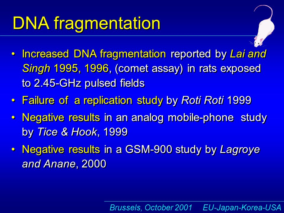 Brussels, October 2001 EU-Japan-Korea-USA DNA fragmentation Increased DNA fragmentation reported by Lai and Singh 1995, 1996, (comet assay) in rats exposed to 2.45-GHz pulsed fields Failure of a replication study by Roti Roti 1999 Negative results in an analog mobile-phone study by Tice & Hook, 1999 Negative results in a GSM-900 study by Lagroye and Anane, 2000 Increased DNA fragmentation reported by Lai and Singh 1995, 1996, (comet assay) in rats exposed to 2.45-GHz pulsed fields Failure of a replication study by Roti Roti 1999 Negative results in an analog mobile-phone study by Tice & Hook, 1999 Negative results in a GSM-900 study by Lagroye and Anane, 2000