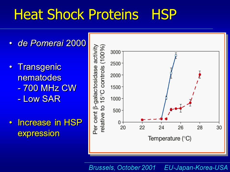 Brussels, October 2001 EU-Japan-Korea-USA Heat Shock Proteins HSP de Pomerai 2000 Transgenic nematodes - 700 MHz CW - Low SAR Increase in HSP expression de Pomerai 2000 Transgenic nematodes - 700 MHz CW - Low SAR Increase in HSP expression