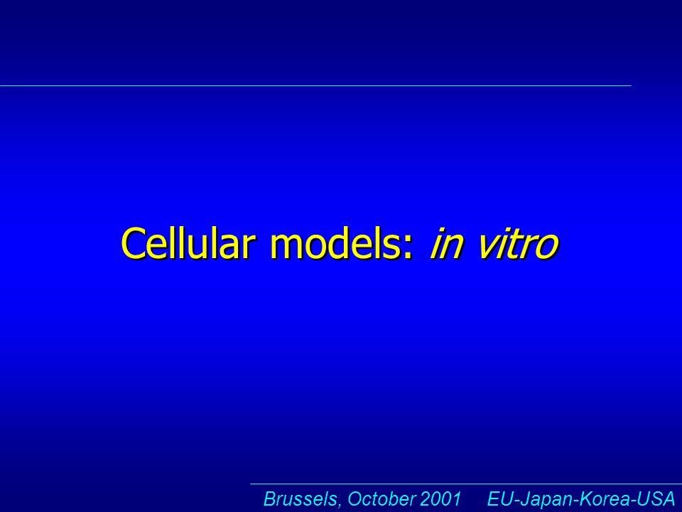 Brussels, October 2001 EU-Japan-Korea-USA Cellular models: in vitro
