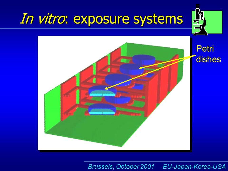 Brussels, October 2001 EU-Japan-Korea-USA In vitro: exposure systems Petri dishes