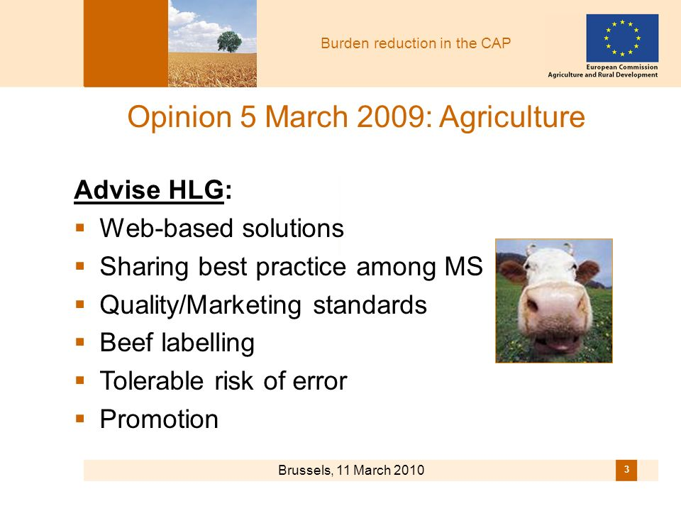 Burden reduction in the CAP Brussels, 11 March 2010 3 Advise HLG: Web-based solutions Sharing best practice among MS Quality/Marketing standards Beef labelling Tolerable risk of error Promotion Opinion 5 March 2009: Agriculture