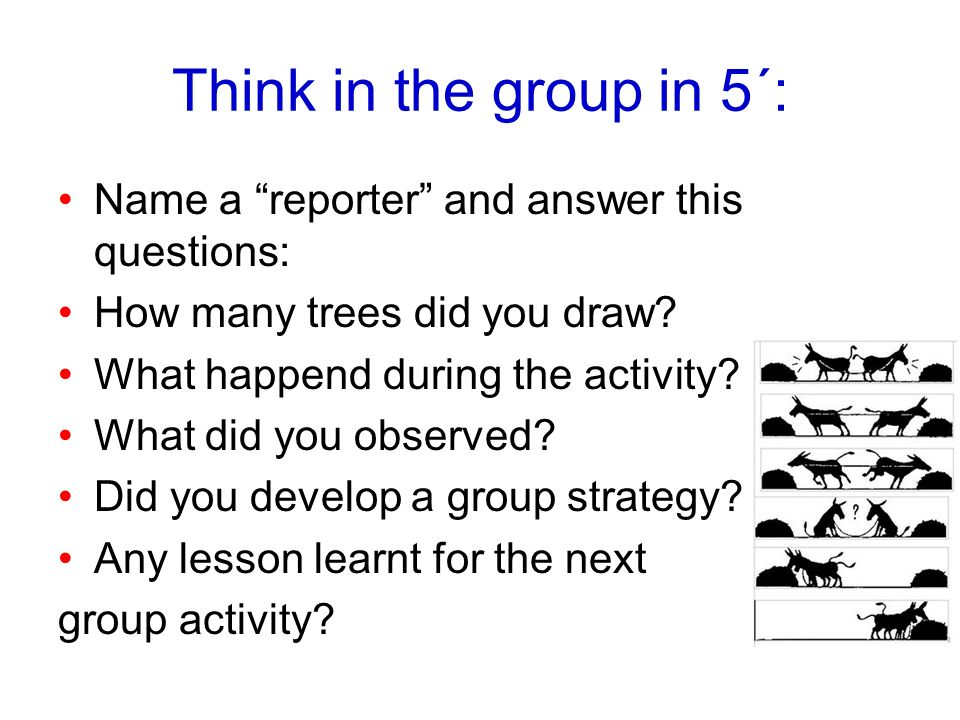 Think in the group in 5´: Name a reporter and answer this questions: How many trees did you draw? What happend during the activity? What did you obser