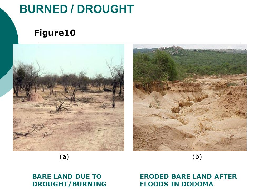 BURNED / DROUGHT BARE LAND DUE TO DROUGHT/BURNING ERODED BARE LAND AFTER FLOODS IN DODOMA Figure10 (a)(b)