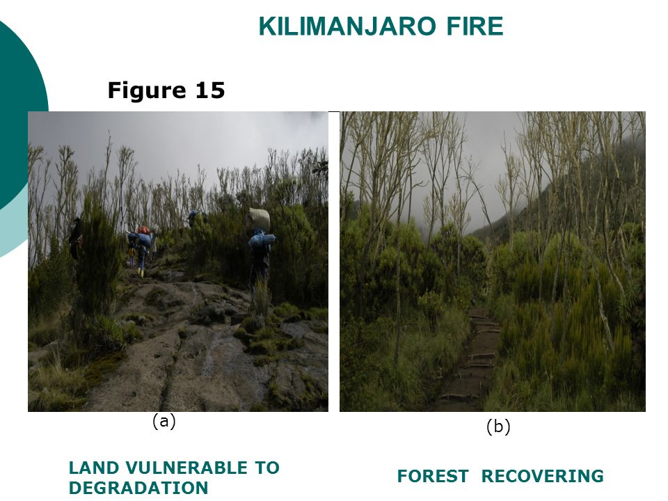 KILIMANJARO FIRE FOREST RECOVERING LAND VULNERABLE TO DEGRADATION Figure 15 (a) (b)
