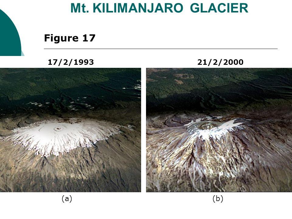 17/2/1993 21/2/2000 Mt. KILIMANJARO GLACIER Figure 17 (a)(b)