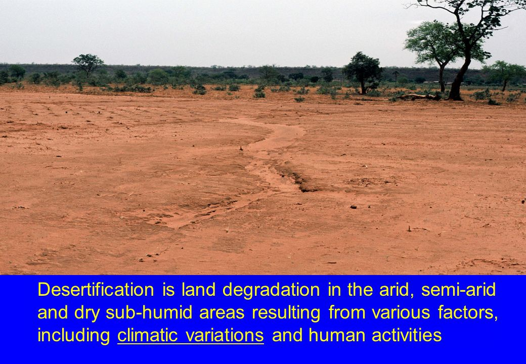 Desertification is land degradation in the arid, semi-arid and dry sub-humid areas resulting from various factors, including climatic variations and h