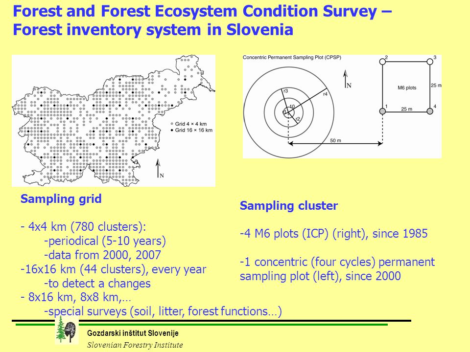 Gozdarski inštitut Slovenije Slovenian Forestry Institute Forest and Forest Ecosystem Condition Survey – Forest inventory system in Slovenia Sampling grid - - 4x4 km (780 clusters): - -periodical (5-10 years) - -data from 2000, 2007 - -16x16 km (44 clusters), every year - -to detect a changes - - 8x16 km, 8x8 km,… - -special surveys (soil, litter, forest functions…) Sampling cluster - -4 M6 plots (ICP) (right), since 1985 - -1 concentric (four cycles) permanent sampling plot (left), since 2000
