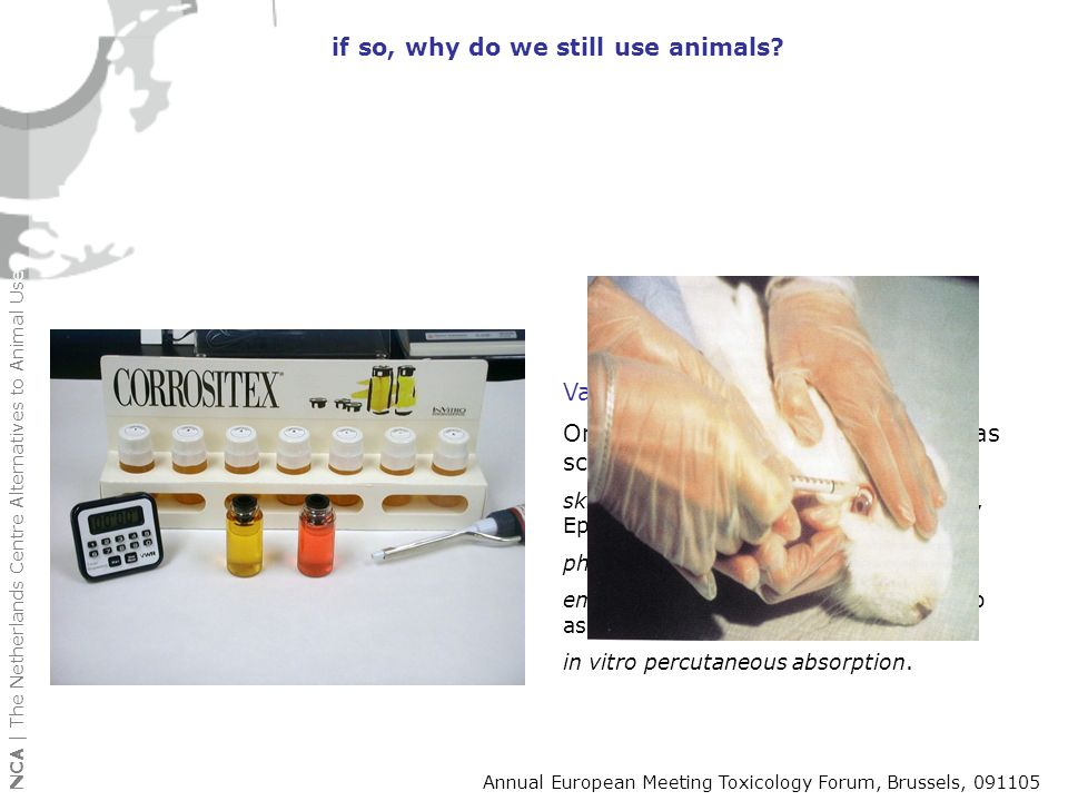 Validated non-animal tests Only 9 non animal tests endorsed as scientifically valid by ECVAM: skin corrosivity (Rat TER, CORROSITEX, Episkin, Epiderm)