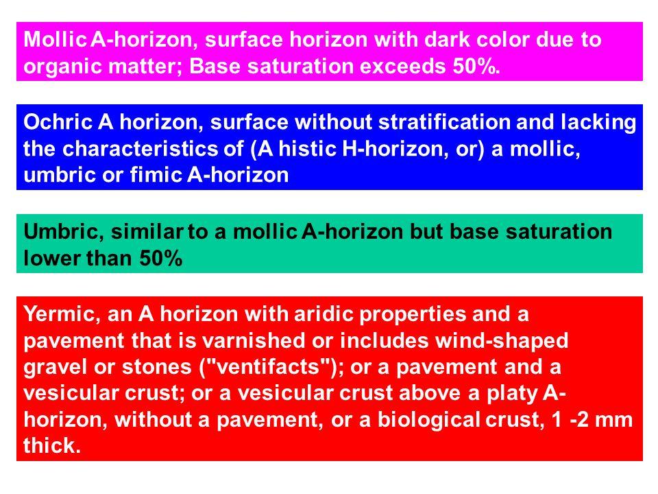 Black mollic epipedon http://soils.usda.gov/
