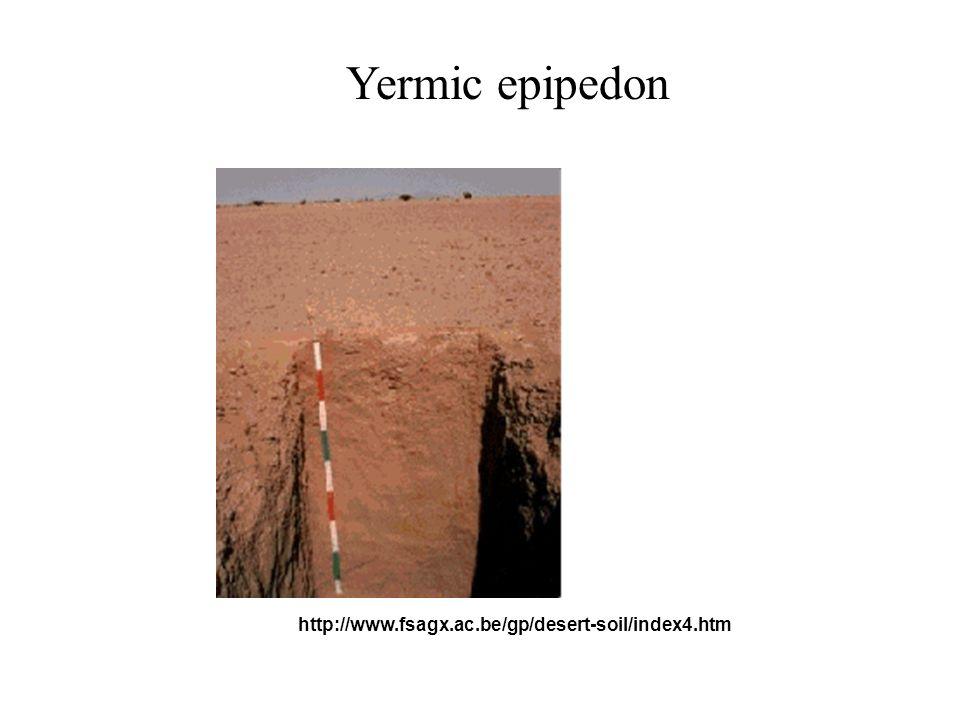 Ochric epipedon http://www.soils.wisc.edu BASALT LIMESTONE Lithic Leptosol Lithic (Chromic?) Leptosol