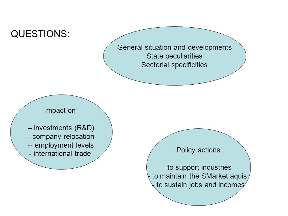 General situation and developments State peculiarities Sectorial specificities Impact on – investments (R&D) - company relocation -- employment levels - international trade Policy actions -to support industries - to maintain the SMarket aquis - to sustain jobs and incomes QUESTIONS: