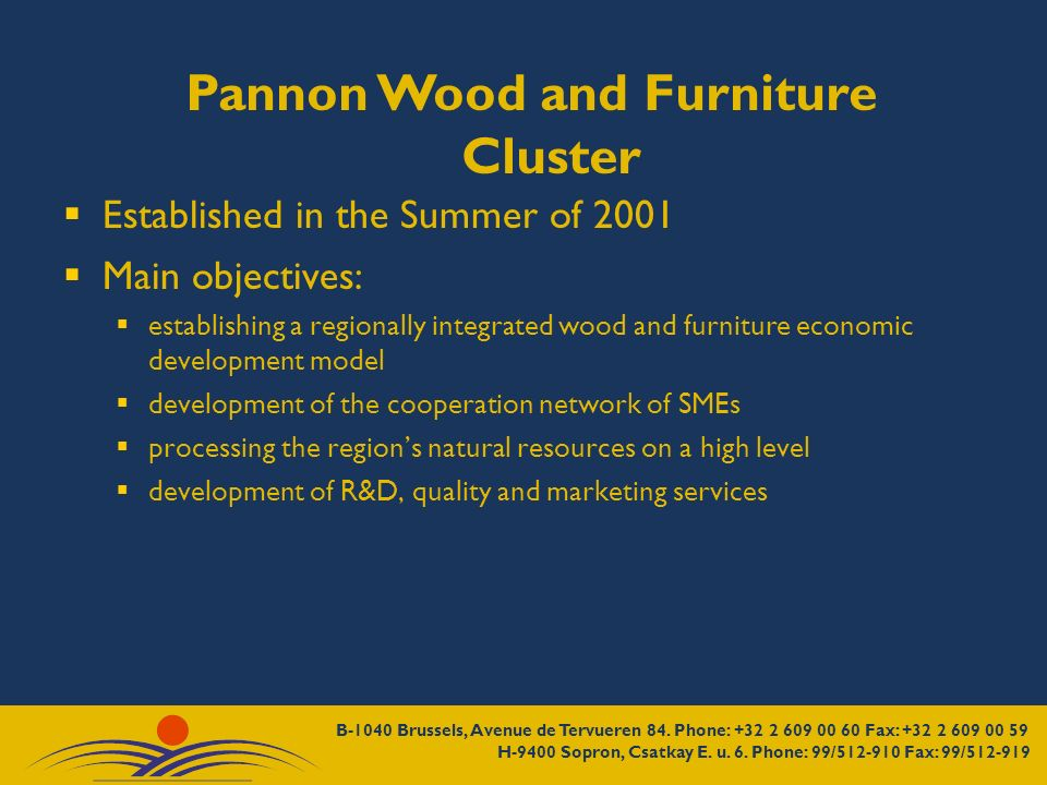 Pannon Wood and Furniture Cluster Established in the Summer of 2001 Main objectives: establishing a regionally integrated wood and furniture economic