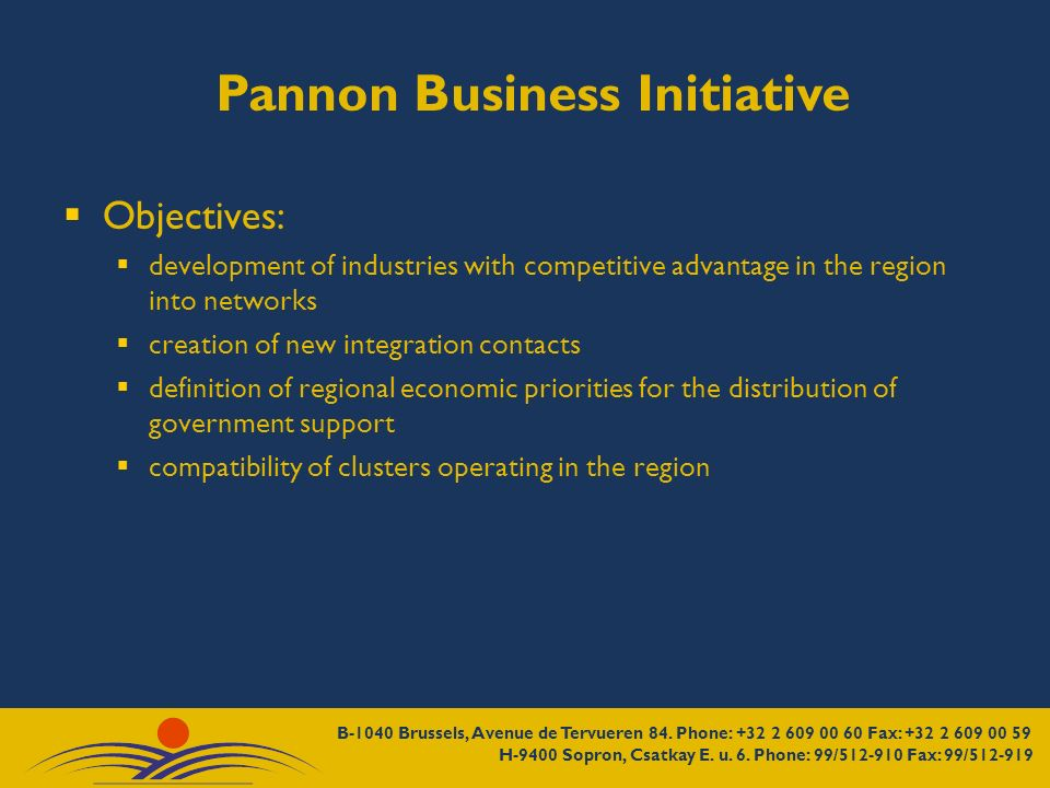 Pannon Business Initiative Objectives: development of industries with competitive advantage in the region into networks creation of new integration co