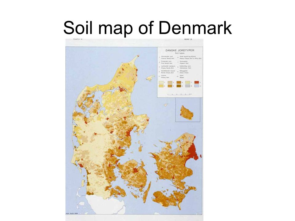 Soil map of Denmark