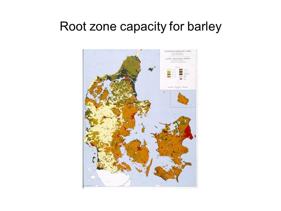 Root zone capacity for barley