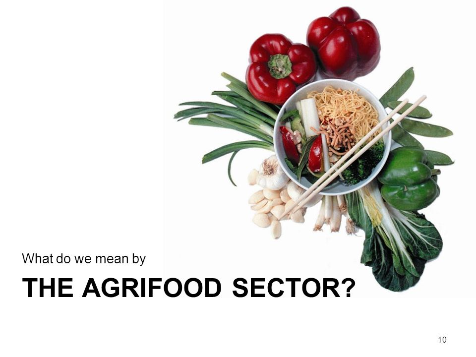 THE AGRIFOOD SECTOR What do we mean by 10