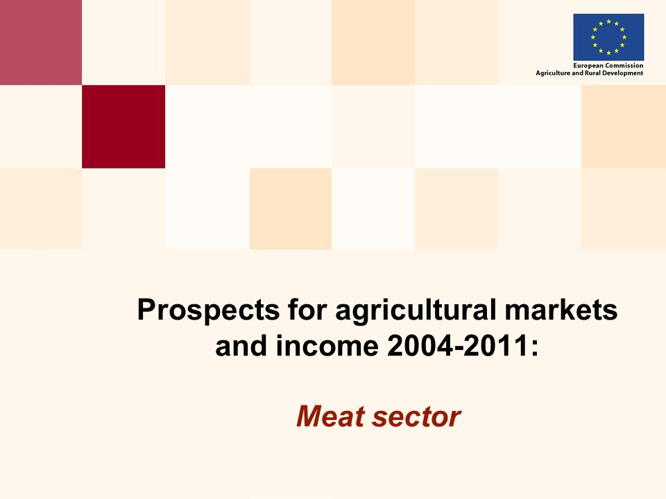 Prospects for agricultural markets and income 2004-2011: Meat sector