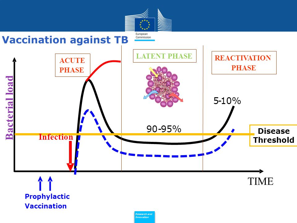 Policy Research and Innovation Research and Innovation TIME ACUTE PHASE LATENT PHASE REACTIVATION PHASE Bacterial load 90-95% 5-10% Prophylactic Vacci