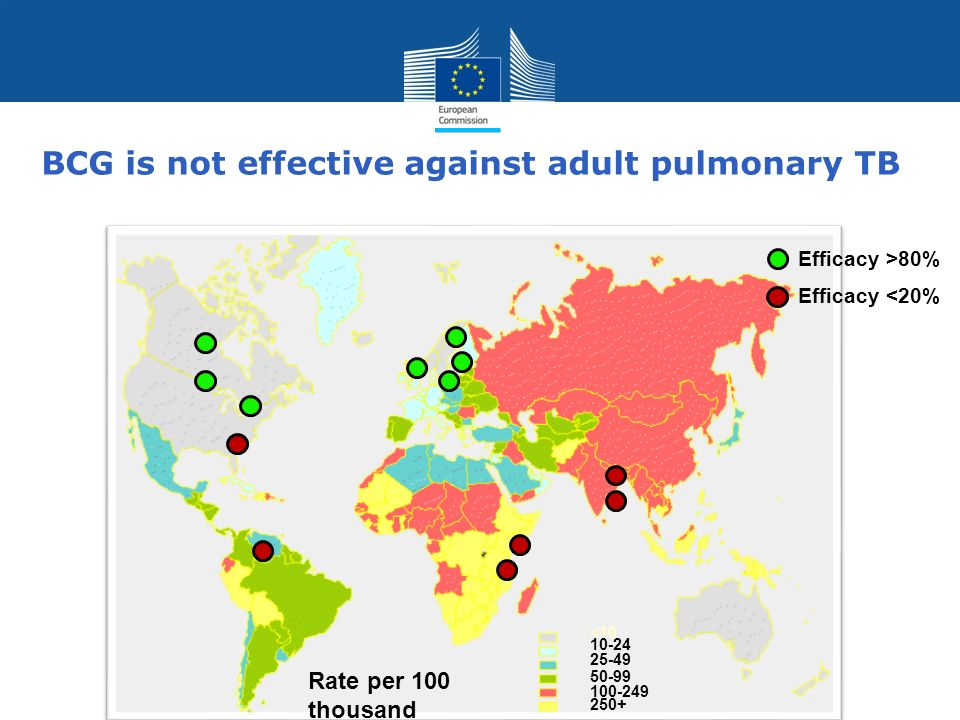 Policy Research and Innovation Research and Innovation BCG is not effective against adult pulmonary TB Rate per 100 thousand <10 10-24 25-49 100-249 2