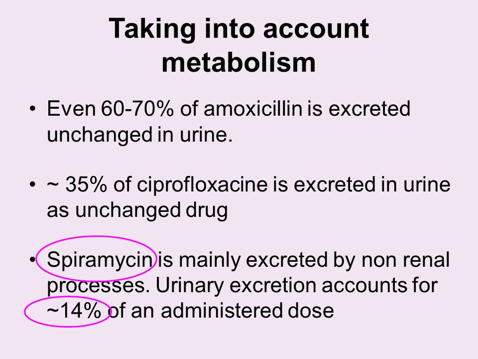 Taking into account metabolism Even 60-70% of amoxicillin is excreted unchanged in urine.