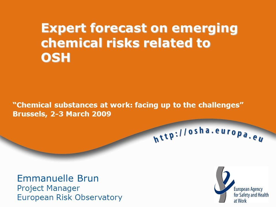 Chemical substances at work: facing up to the challenges Brussels, 2-3 March 2009 Expert forecast on emerging chemical risks related to OSH Emmanuelle Brun Project Manager European Risk Observatory