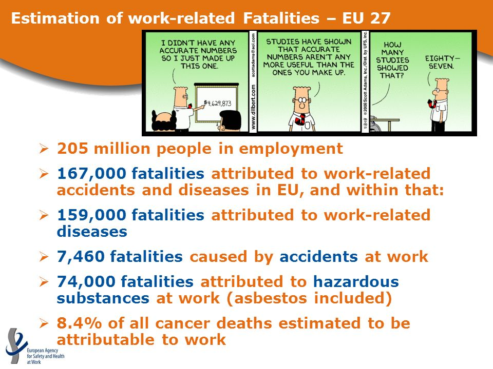Estimation of work-related Fatalities – EU 27 205 million people in employment 167,000 fatalities attributed to work-related accidents and diseases in