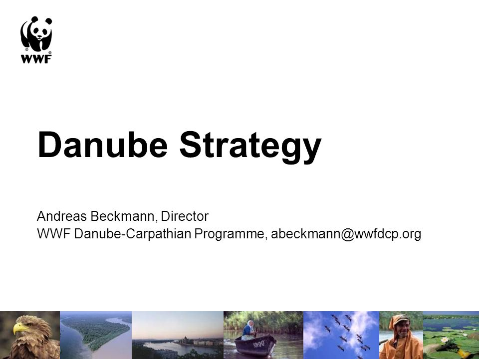 Danube Strategy Andreas Beckmann, Director WWF Danube-Carpathian Programme, abeckmann@wwfdcp.org
