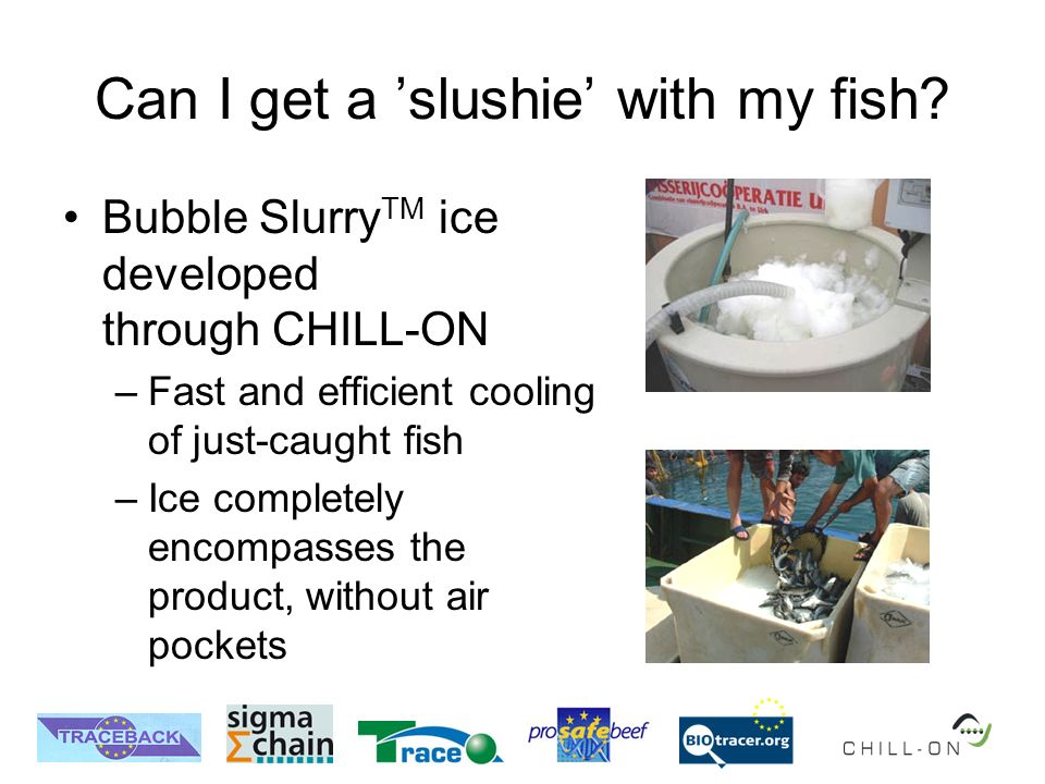 Can I get a slushie with my fish? Bubble Slurry TM ice developed through CHILL-ON –Fast and efficient cooling of just-caught fish –Ice completely enco