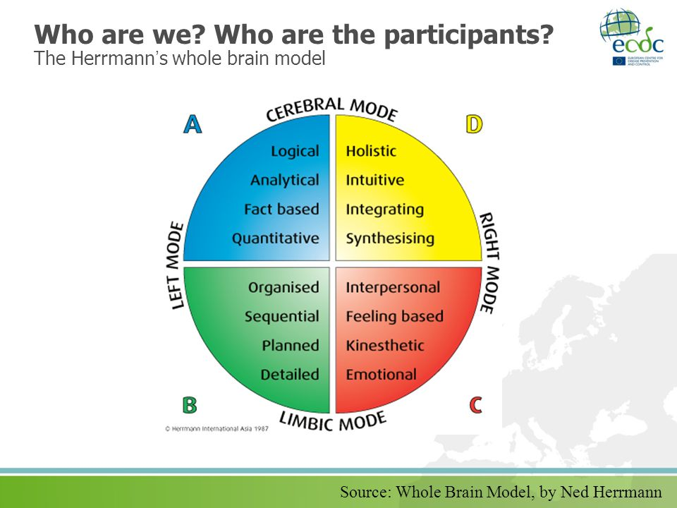Who are we? Who are the participants? The Herrmanns whole brain model Source: Whole Brain Model, by Ned Herrmann