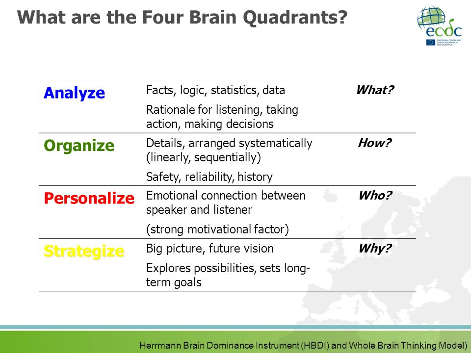 What are the Four Brain Quadrants? Herrmann Brain Dominance Instrument (HBDI) and Whole Brain Thinking Model) Analyze Facts, logic, statistics, data R