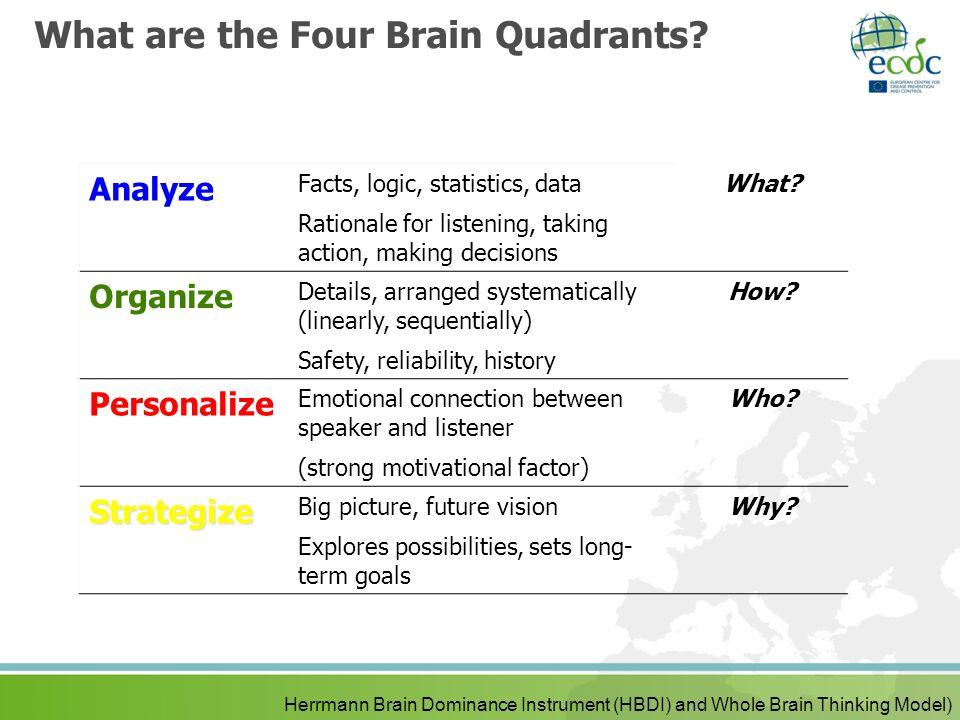 What are the Four Brain Quadrants.
