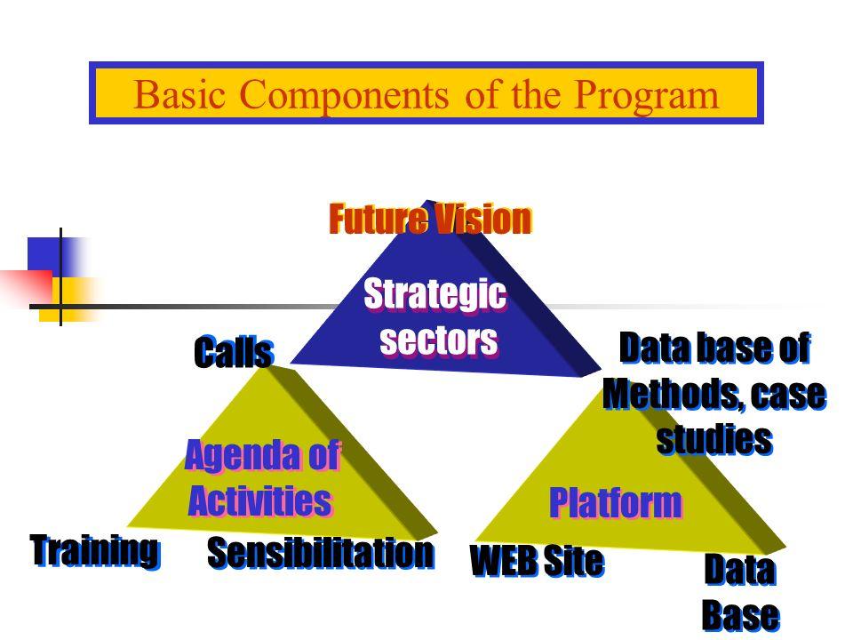 Future Vision Strategic sectors Strategic sectors Data base of Methods, case studies Data base of Methods, case studies Calls Agenda of Activities Agenda of Activities Training Sensibilitation WEB Site Platform Data Base Data Base Basic Components of the Program