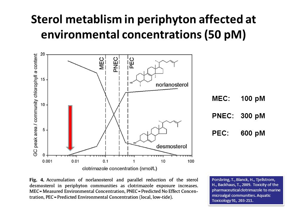 Sterol metablism in periphyton affected at environmental concentrations (50 pM) MEC: 100 pM PNEC: 300 pM PEC: 600 pM Porsbring, T., Blanck, H., Tjells