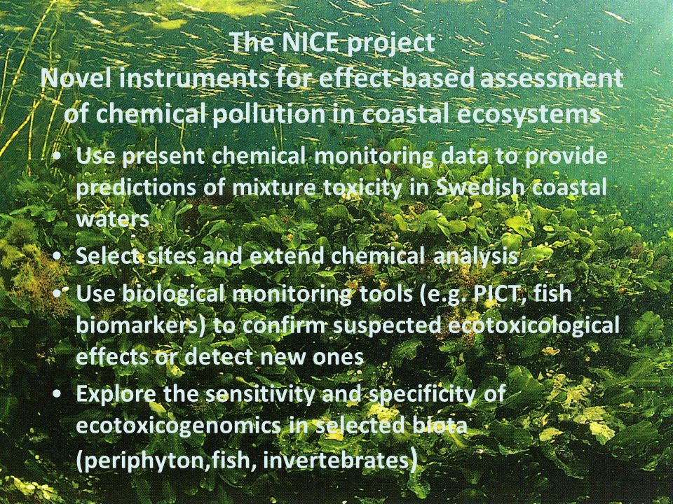 The NICE project Novel instruments for effect-based assessment of chemical pollution in coastal ecosystems Use present chemical monitoring data to pro