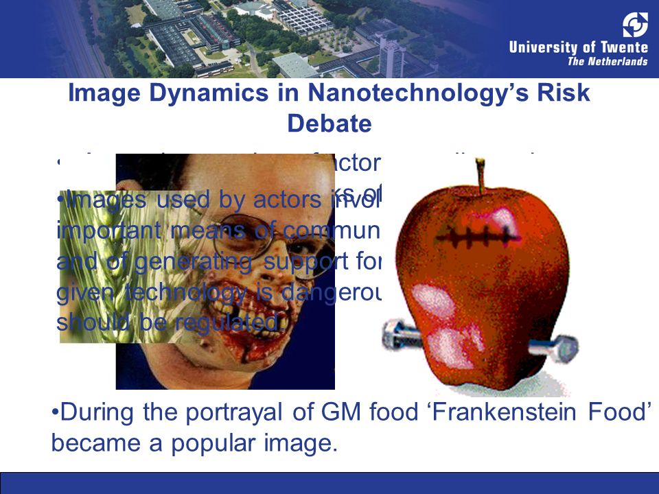 Image Dynamics in Nanotechnologys Risk Debate A growing number of actors are discussing the risks and drawbacks of Nanotechnology.