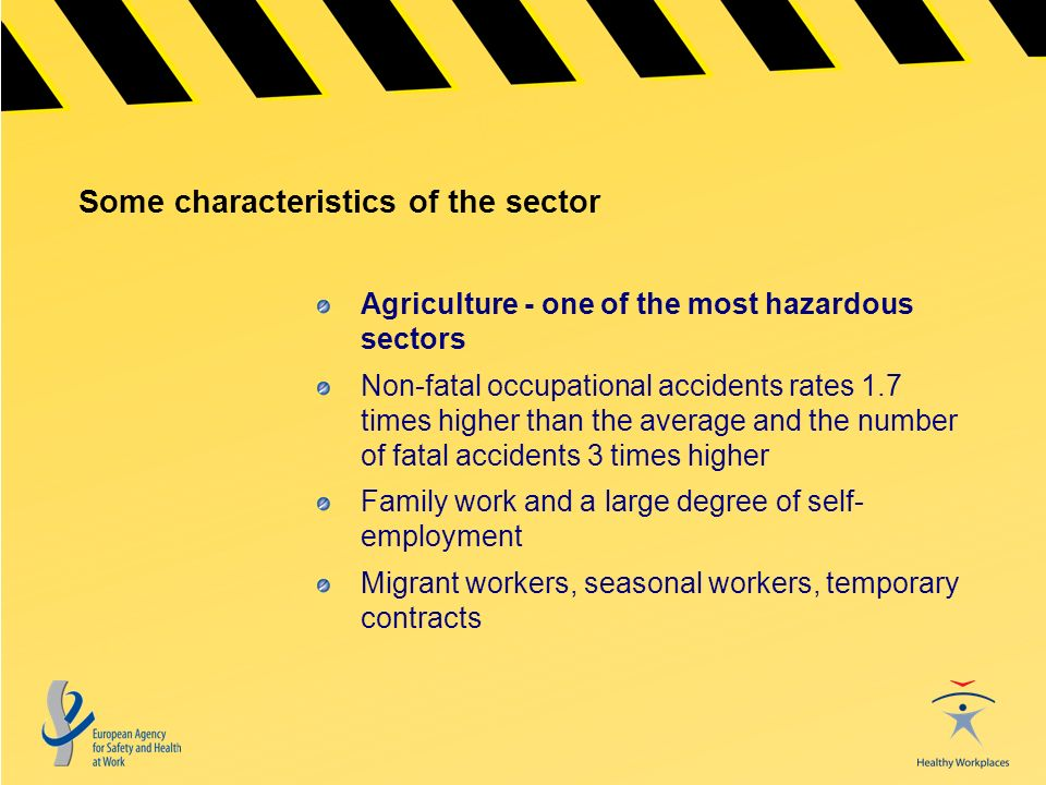 Some characteristics of the sector Agriculture - one of the most hazardous sectors Non-fatal occupational accidents rates 1.7 times higher than the average and the number of fatal accidents 3 times higher Family work and a large degree of self- employment Migrant workers, seasonal workers, temporary contracts