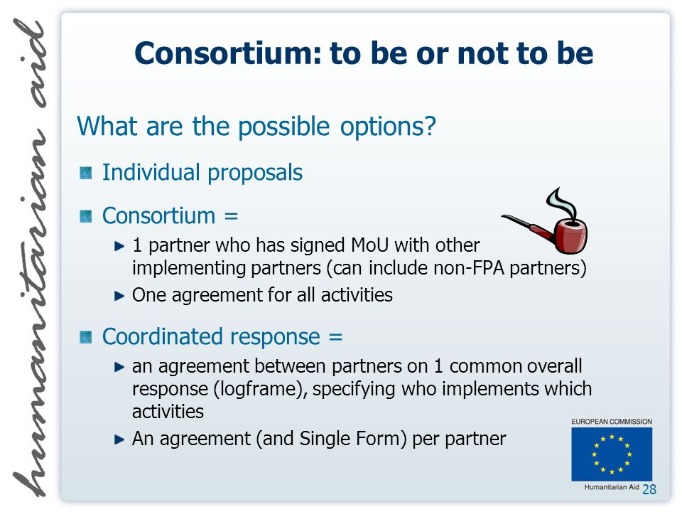 28 Consortium: to be or not to be What are the possible options.