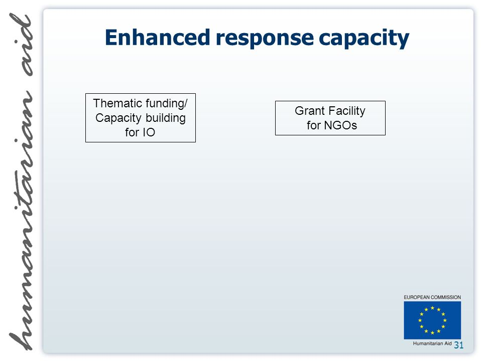31 Enhanced response capacity Thematic funding/ Capacity building for IO Grant Facility for NGOs