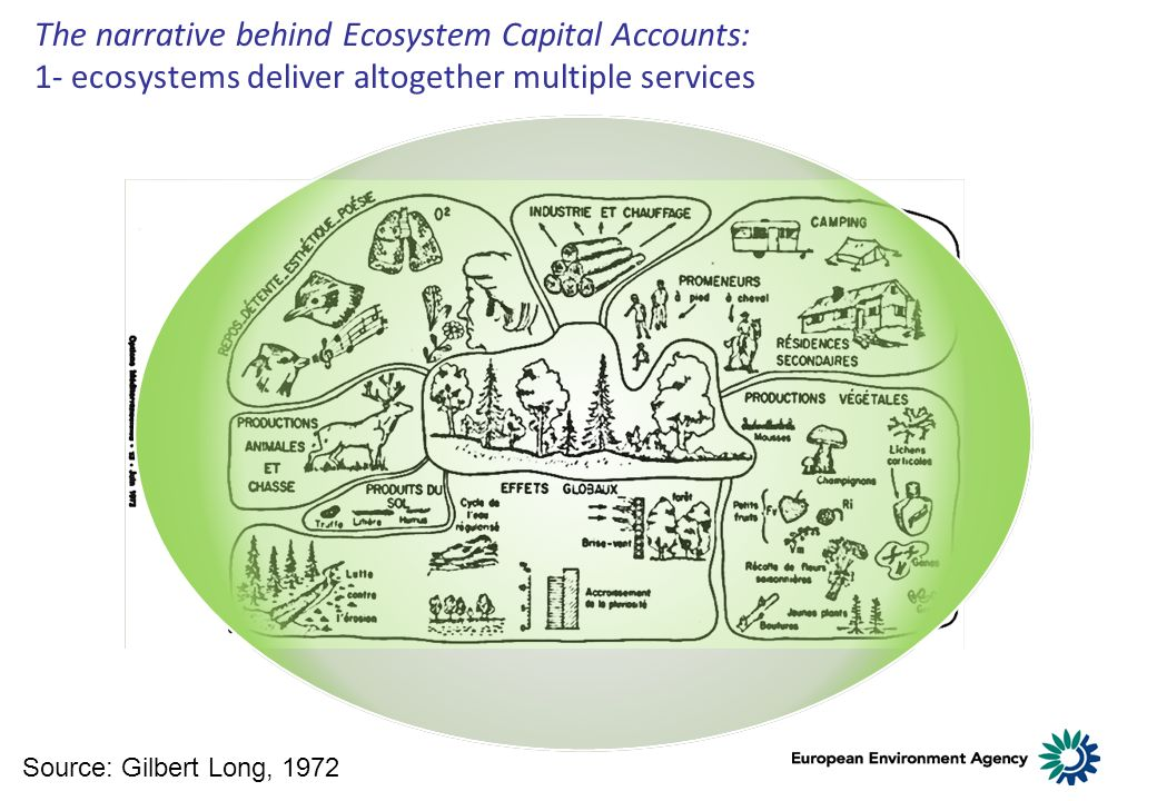 Source: Gilbert Long, 1972 The narrative behind Ecosystem Capital Accounts: 1- ecosystems deliver altogether multiple services
