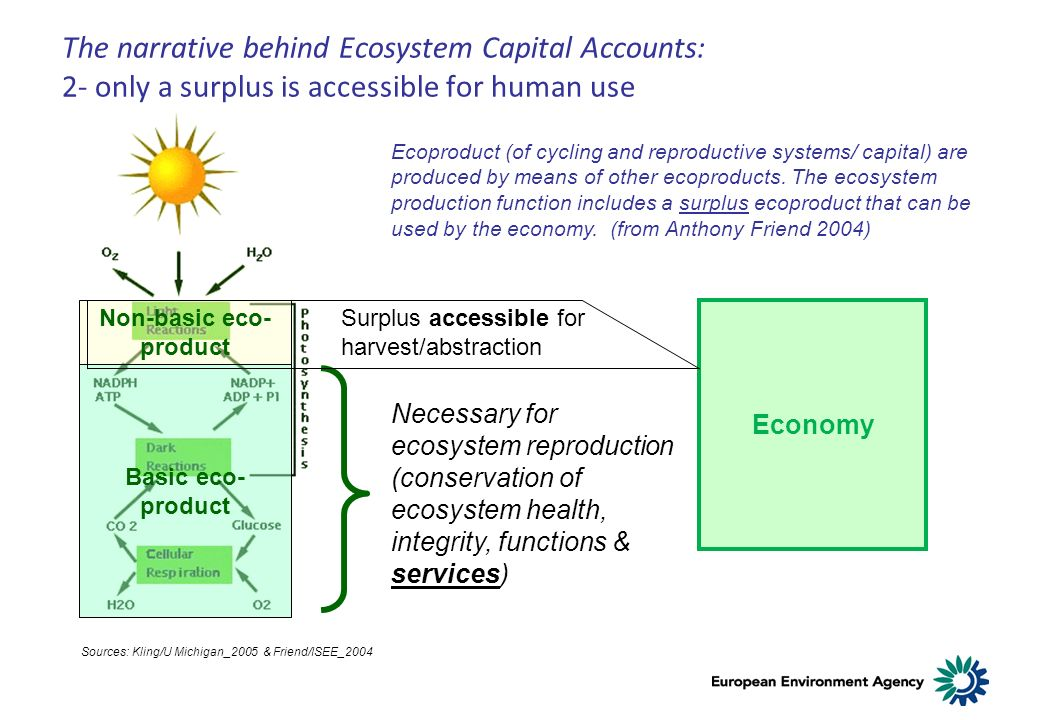 The narrative behind Ecosystem Capital Accounts: 2- only a surplus is accessible for human use Ecoproduct (of cycling and reproductive systems/ capital) are produced by means of other ecoproducts.
