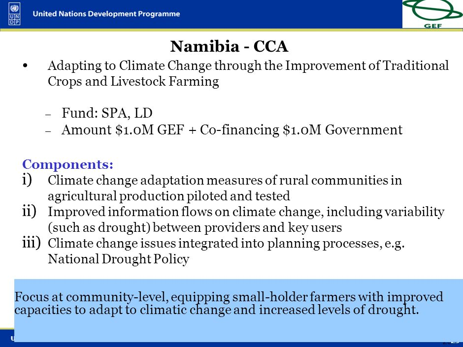 UNDP-GEF Adaptation 28 Coping with Drought and Climate Change Adaptive capacities of local communities, local and national institutions and the region