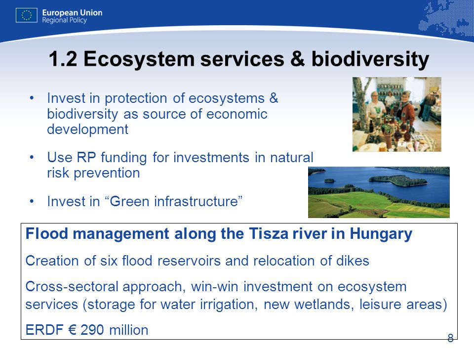 8 1.2 Ecosystem services & biodiversity Invest in protection of ecosystems & biodiversity as source of economic development Use RP funding for investments in natural risk prevention Invest in Green infrastructure Flood management along the Tisza river in Hungary Creation of six flood reservoirs and relocation of dikes Cross-sectoral approach, win-win investment on ecosystem services (storage for water irrigation, new wetlands, leisure areas) ERDF 290 million