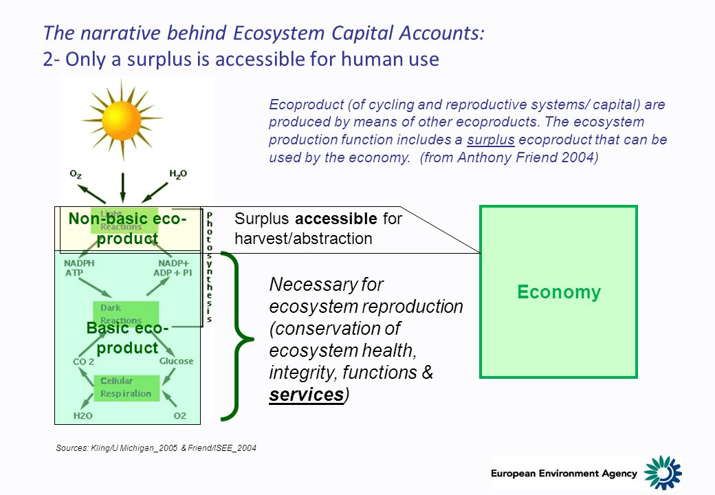 The narrative behind Ecosystem Capital Accounts: 2- Only a surplus is accessible for human use Ecoproduct (of cycling and reproductive systems/ capita