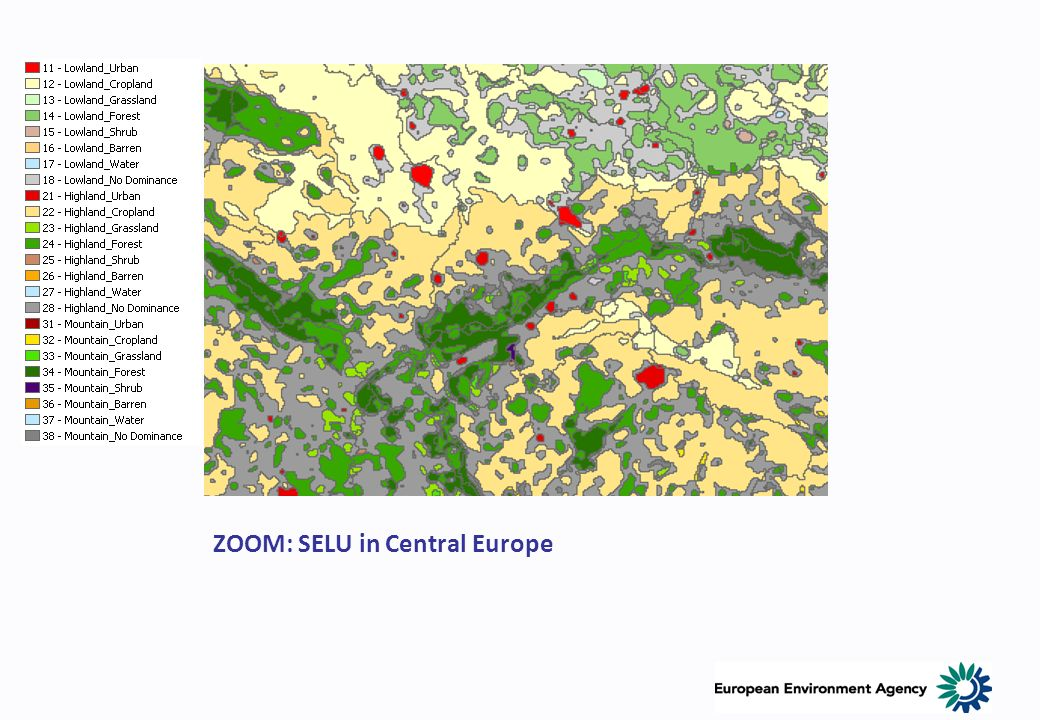ZOOM: SELU in Central Europe