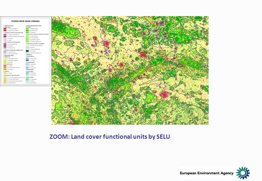 ZOOM: Land cover functional units by SELU